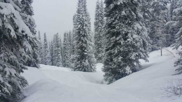 fresh-powder-march-16-2016