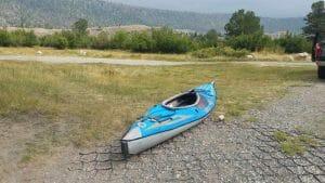 pine beetle kill near Ring Lake - Dubois Wyoming