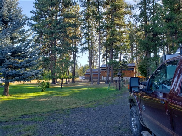 Nice tree shade at my Boondockers Welcome RV campsite in McCall Idaho