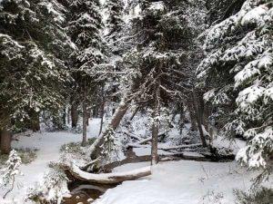 anthony lake hike