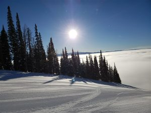 jackson hole and winter rv life