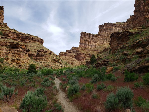 daddy canyon in nine mile canyon