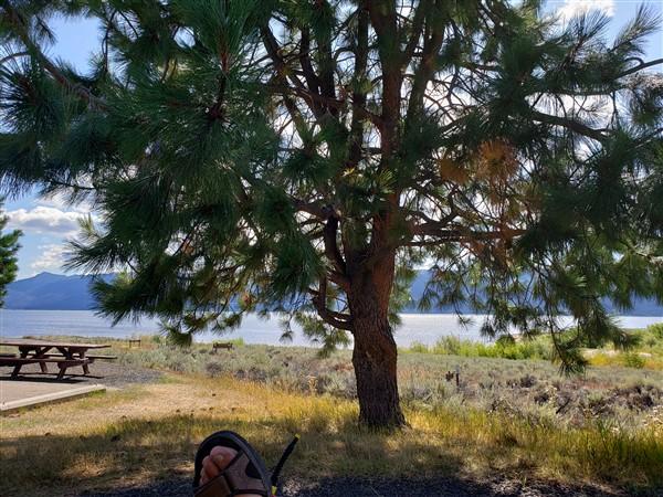 RV Camping in Sugarloaf Unit in Lake Cascade State Park
